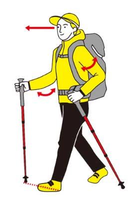 トレッキングポールを使った効果的な歩き方