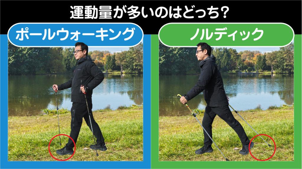 "<img src=""walking-q.jpg"" alt=""ポールウォーキングとノルディックウォーキングの効果の違い"">"