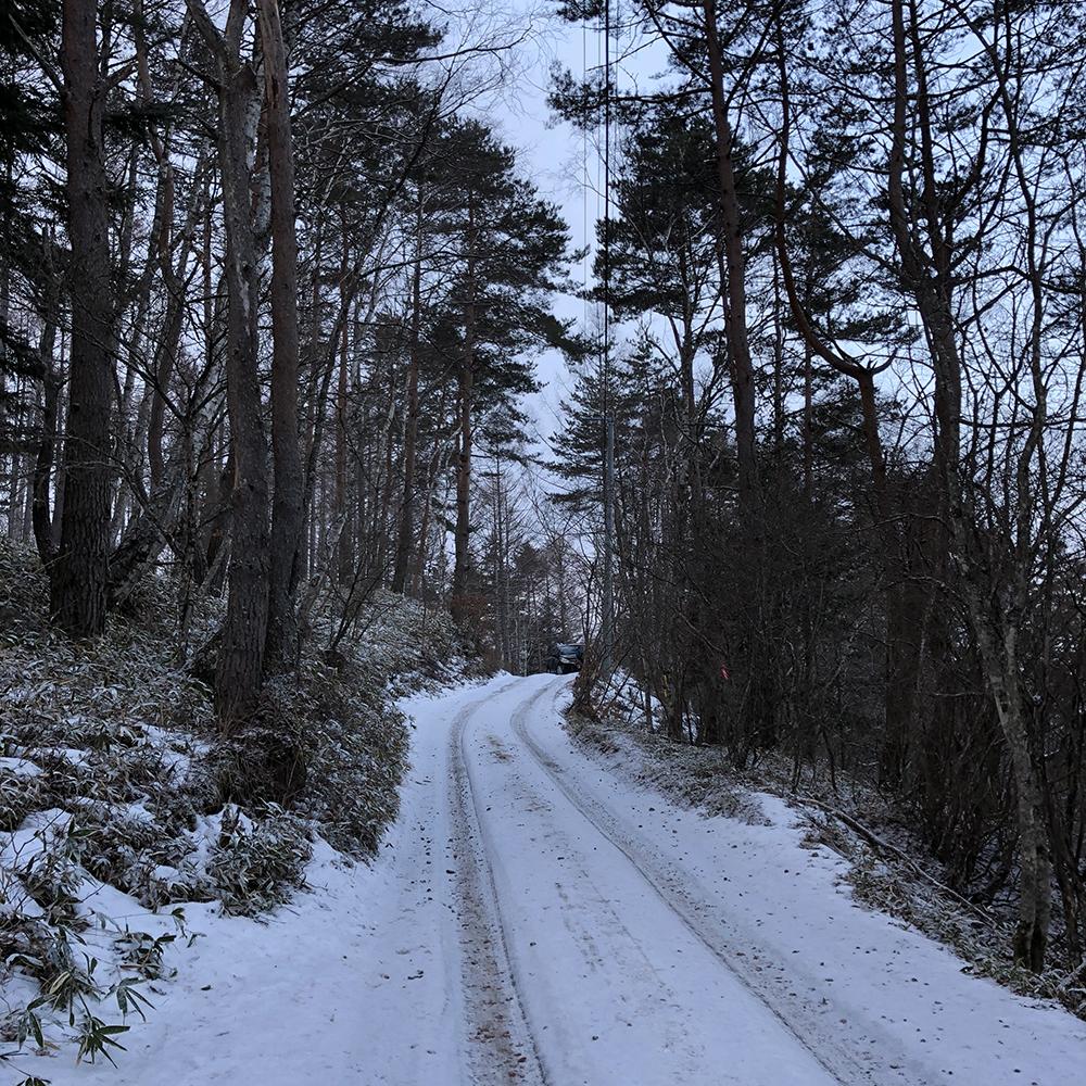 凍った林道