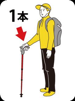 ハイキングにお勧め、ステッキ・タイプ
