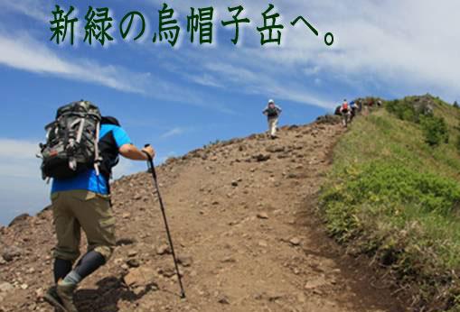 新緑の烏帽子岳へ